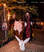 Smith House Halloween 2016-024
